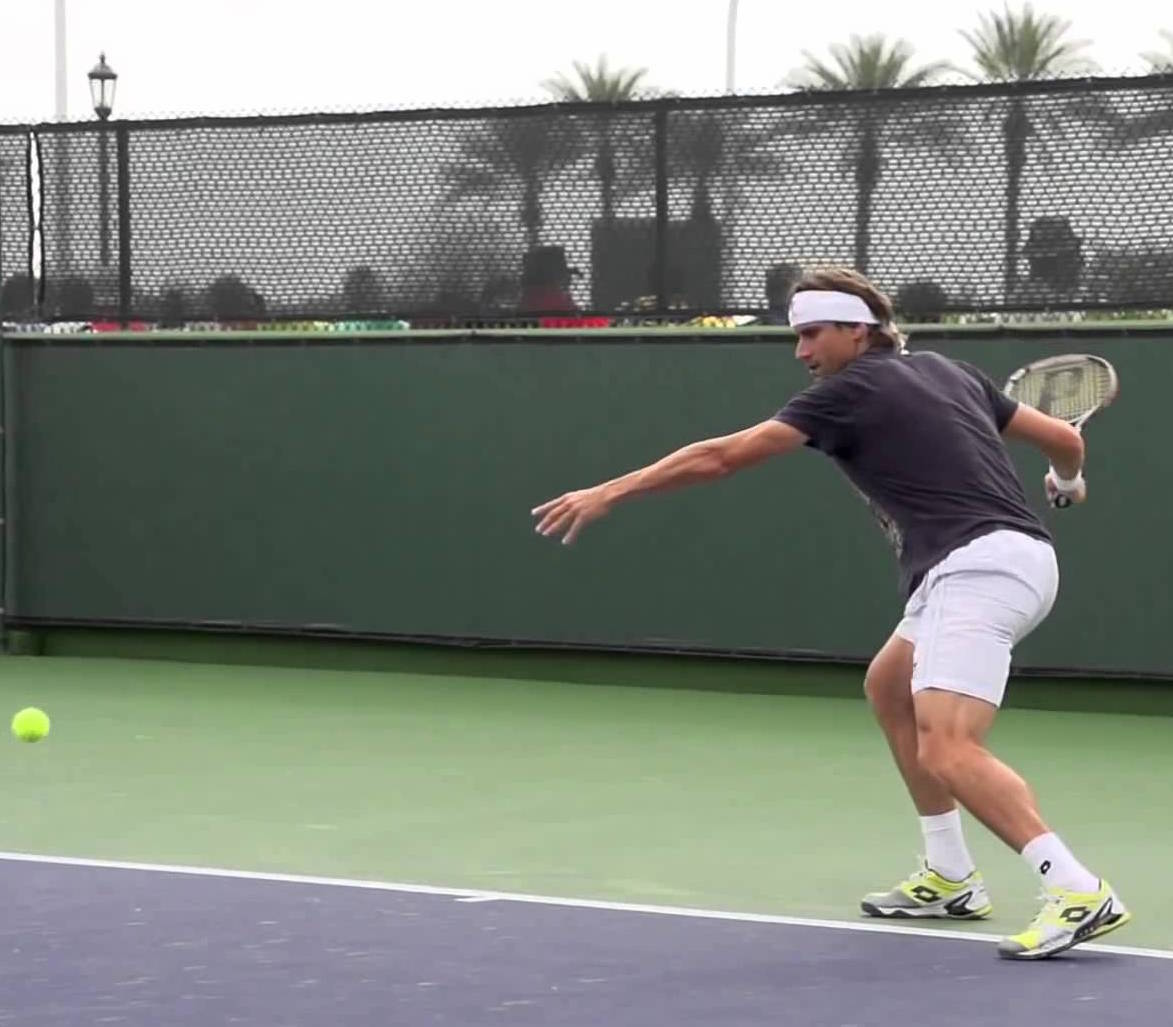 David Ferrer hits a forehand